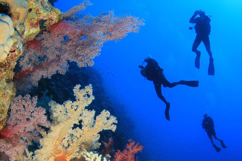 Low -Season-Speciali | DIVE CENTER KRK